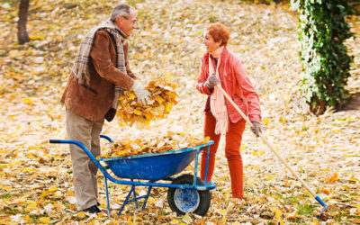 Avoid Back Pain with these Fall Raking Tips